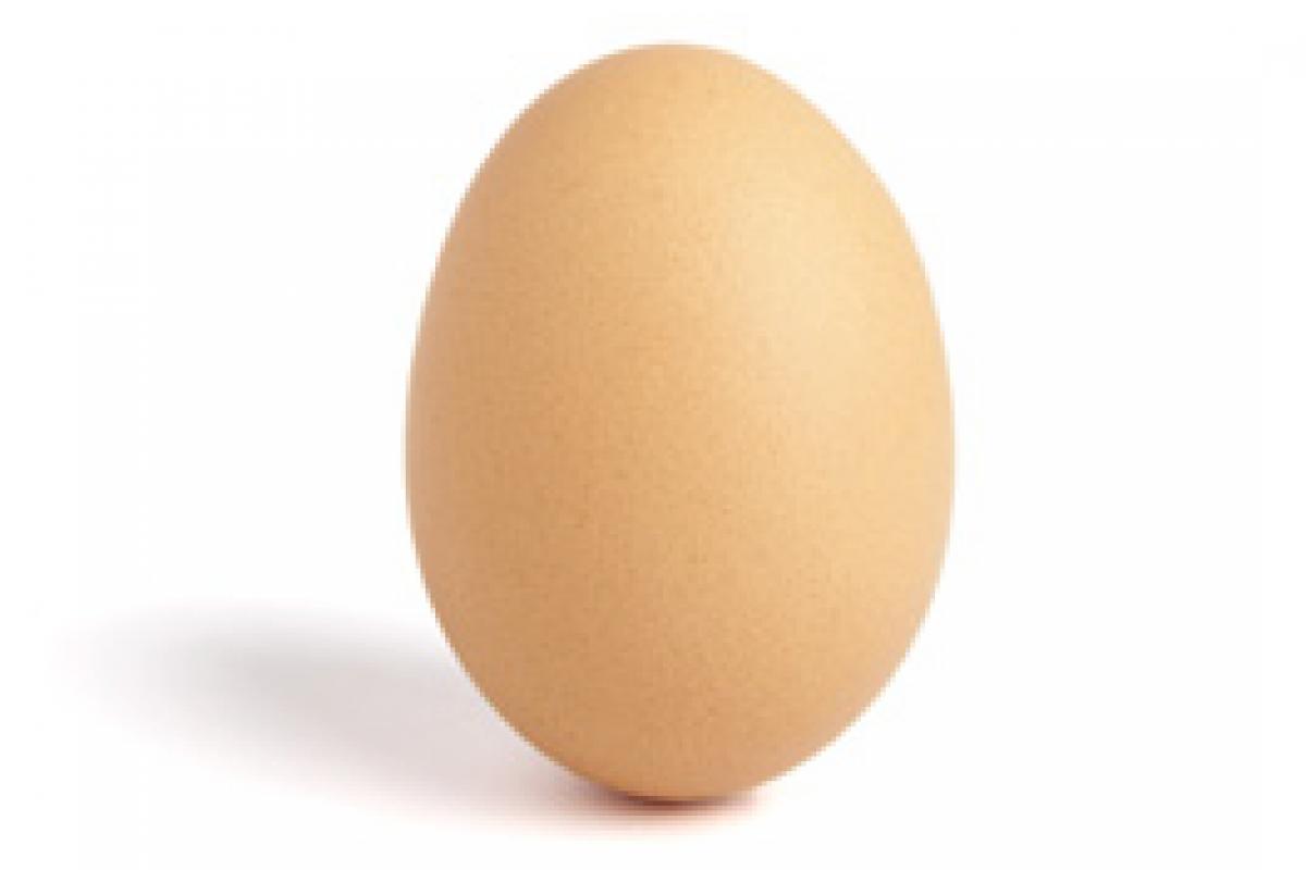 Ξεκινάμε το αβγό!