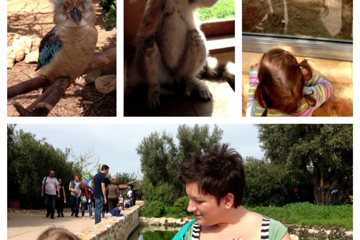 Βόλτα στο Αττικό Ζωολογικό Πάρκο