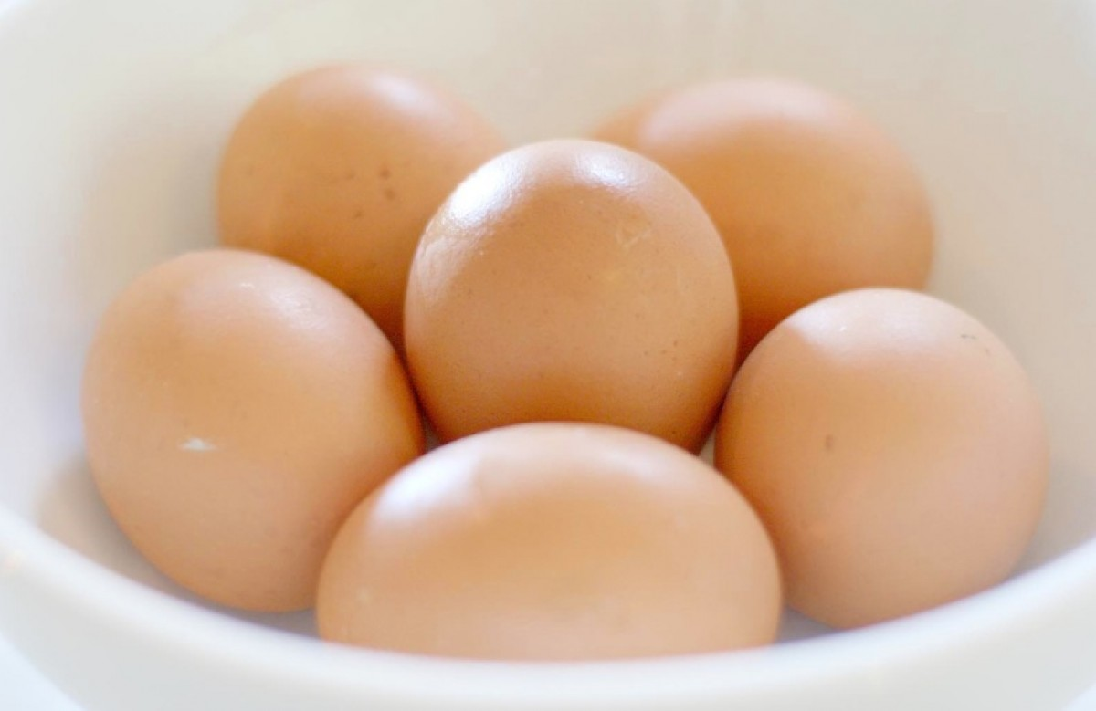 Αποτέλεσμα εικόνας για Αυγο