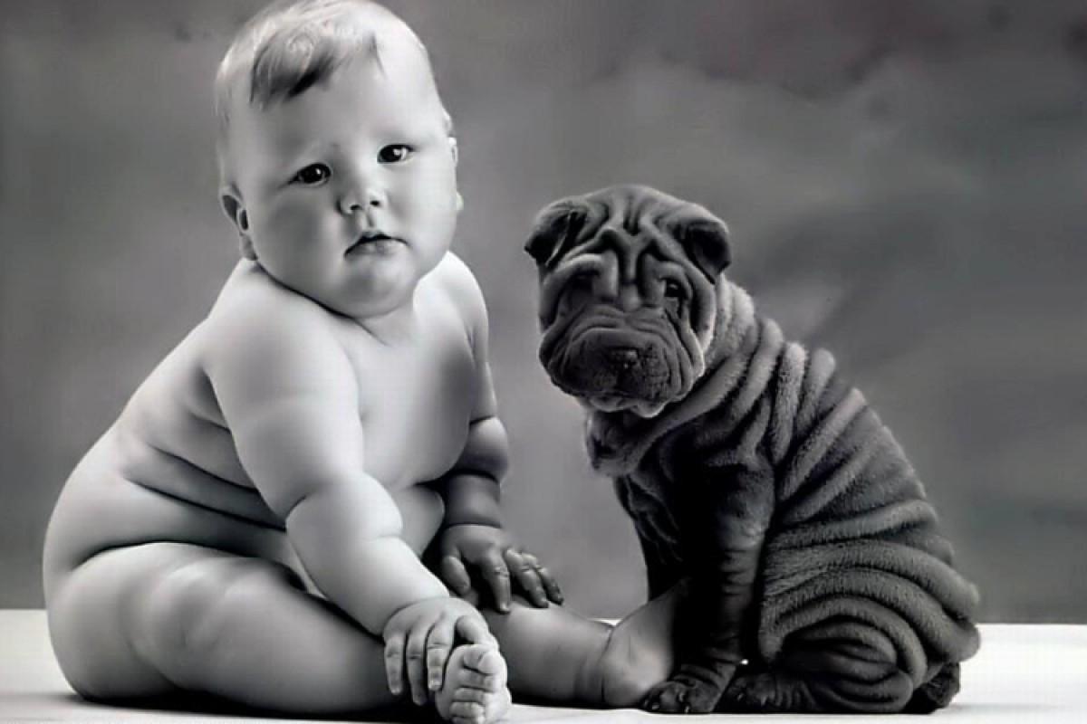 Προετοιμάζοντας τον σκύλο για τον ερχομό του μωρού