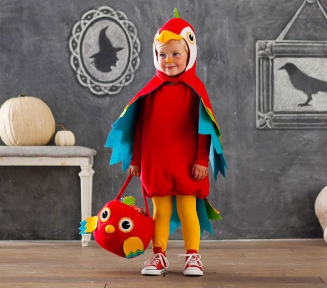 6-Parrot-645x568