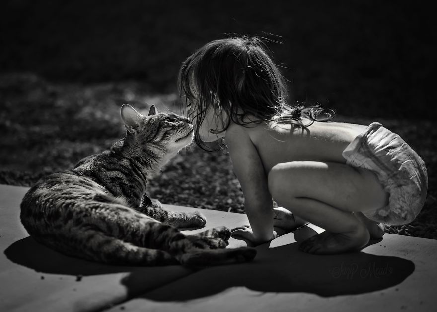 children-cat-playing-photography-11__880