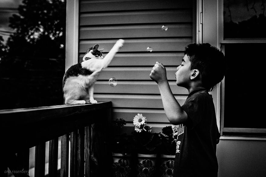 children-cat-playing-photography-20__880