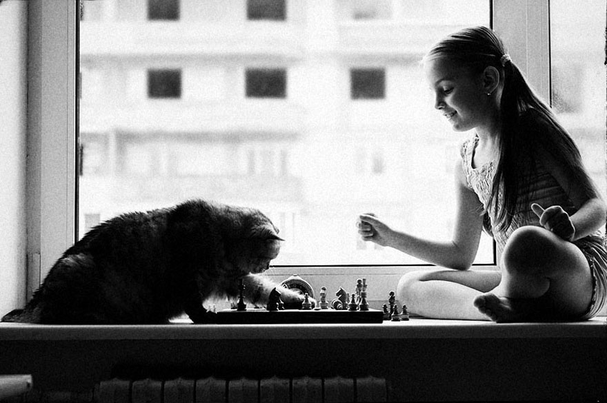 children-cat-playing-photography-29__880