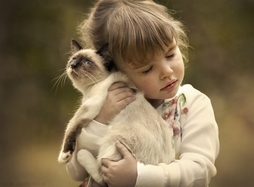 children-cat-playing-photography-2__880