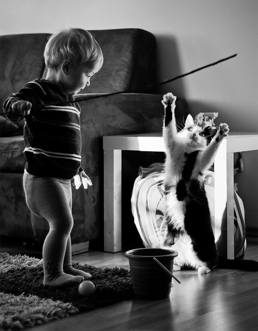 children-cat-playing-photography-36__880