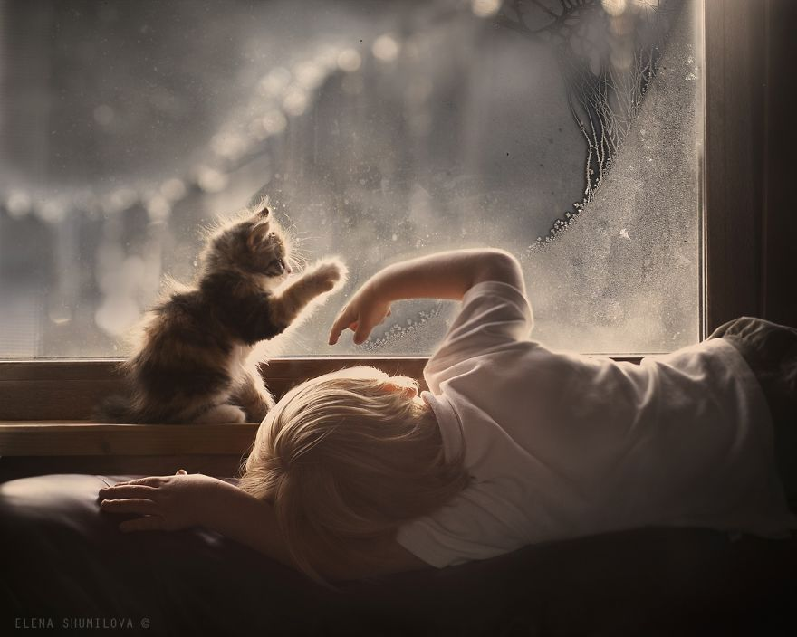 children-cat-playing-photography-4__880
