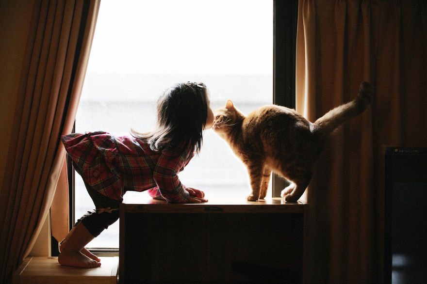 children-cat-playing-photography-8__880