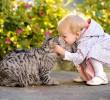 20 φωτογραφίες που θα σας πείσουν να πάρετε γάτα
