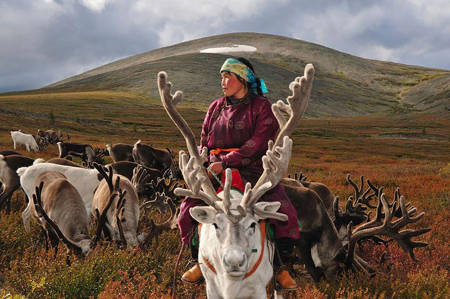 reindeer-people-hamid-sardar-afkhami-6