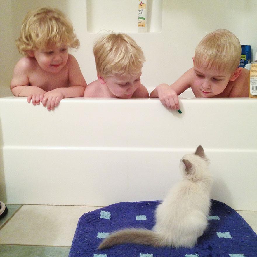 boy-cat-friendship-beth-mancuso7