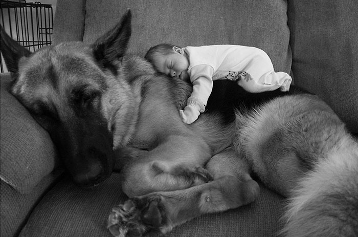 kids-with-dogs-652__700