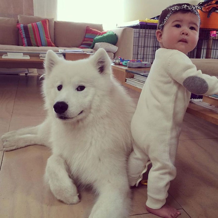 kids-with-dogs-82__700