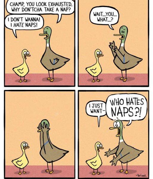 comic-naps-514x600