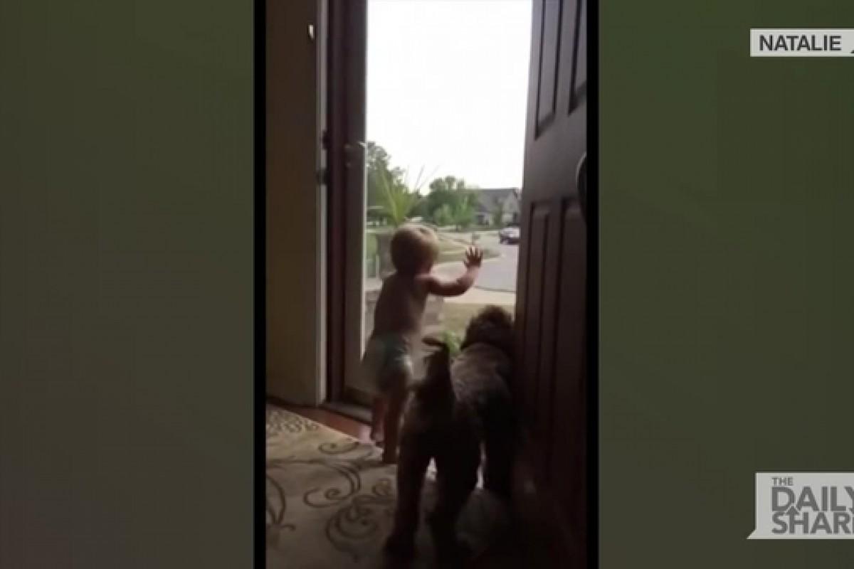 [Βίντεο] Πόσο μπορεί να χαίρεται ένα μωρό που ο μπαμπάς του γύρισε σπίτι; Τόσο πολύ!
