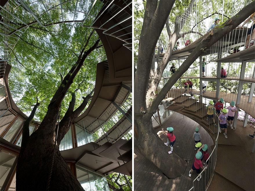 kindergarten-around-tree-zelkova-fuji-tezuka-architects-32