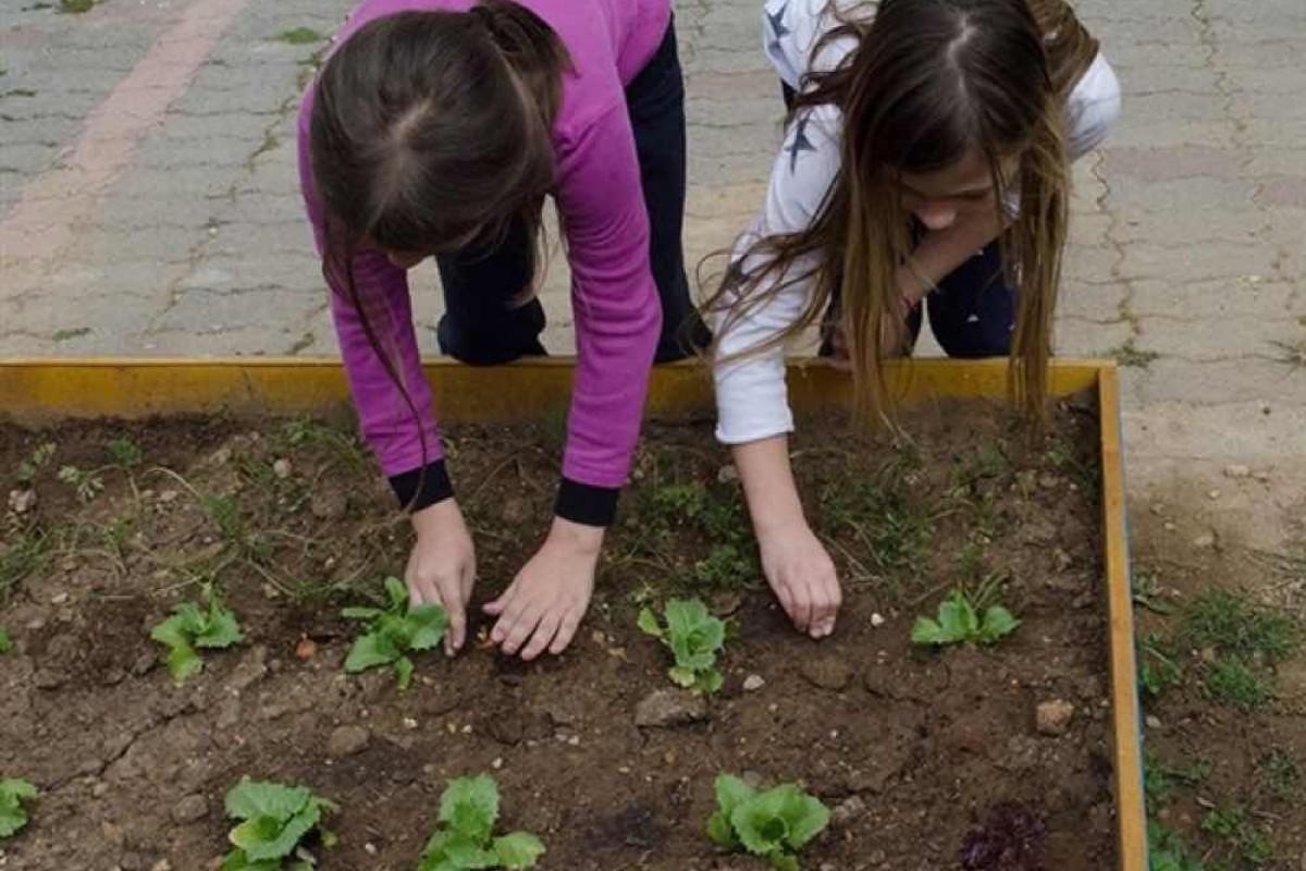 Η επανάσταση στη διατροφή μας ξεκινάει από το σχολείο
