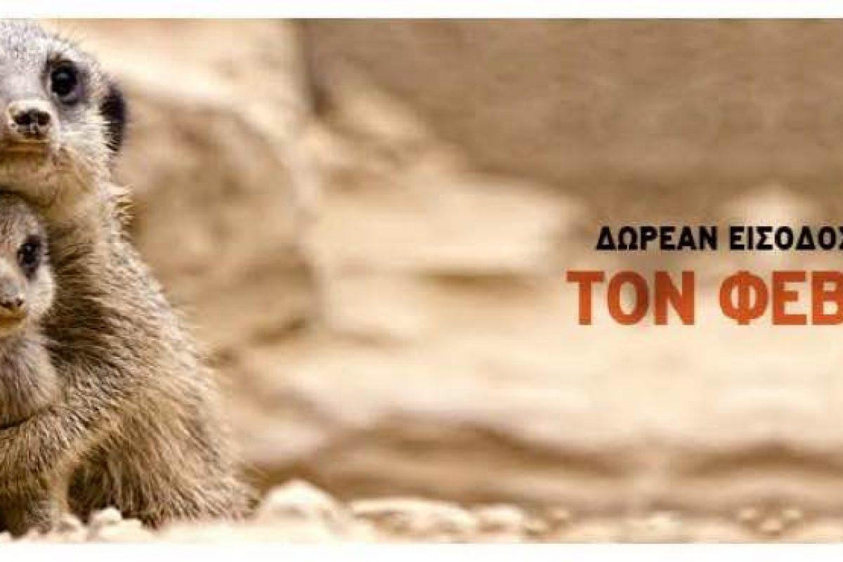 Δωρεάν είσοδος για τα παιδιά τον Φεβρουάριο στο Αττικό Ζωολογικό Πάρκο!